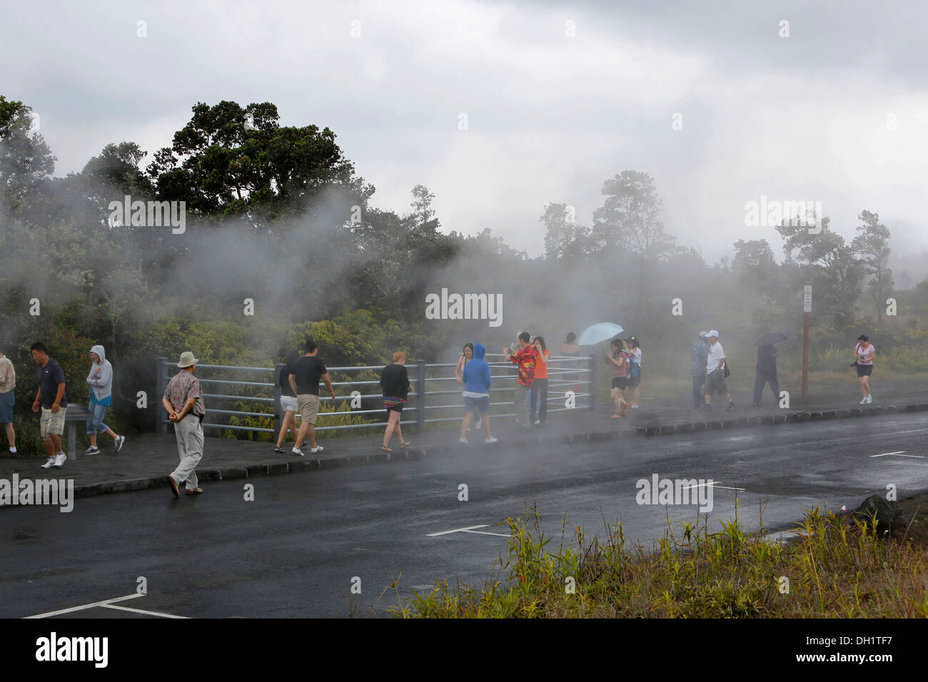 Tourists observing steam vents, hot springs, Hawaii Volcanoes National Park, Big Island, Hawaii, USA - Stock Image