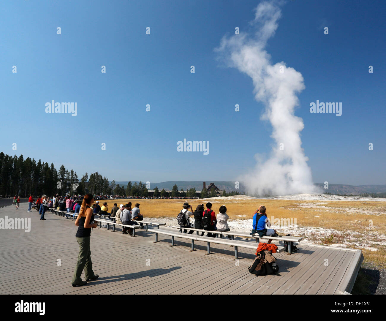 Understand you. Watching the geyser