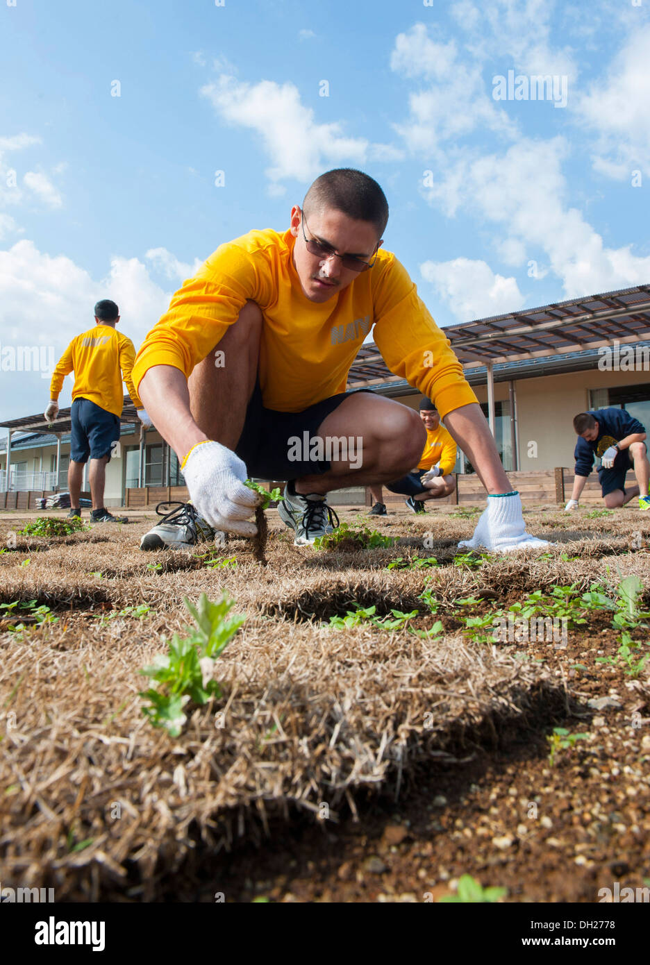 SASEBO, Japan (Oct. 26, 2013) Religious Programs Specialist Erik Pautsch, assigned to the amphibious assault ship USS Bonhomme Richard (LHD 6), picks weeds during a volunteer service project at Kain-so Nursing Home. Bonhomme Richard is the lead ship of th - Stock Image