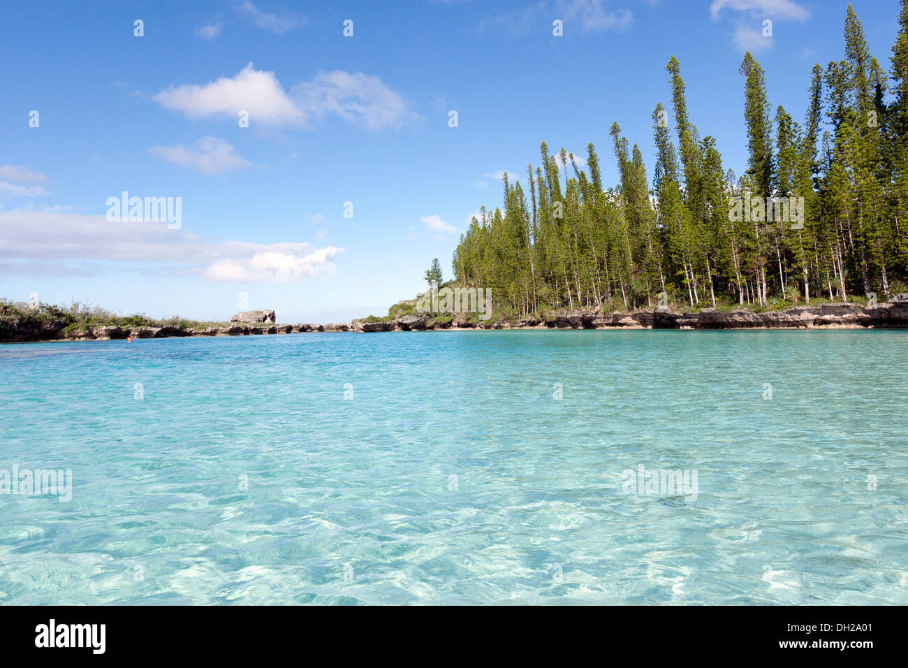 Piscine naturelle stock photos piscine naturelle stock - Piscine naturelle ...
