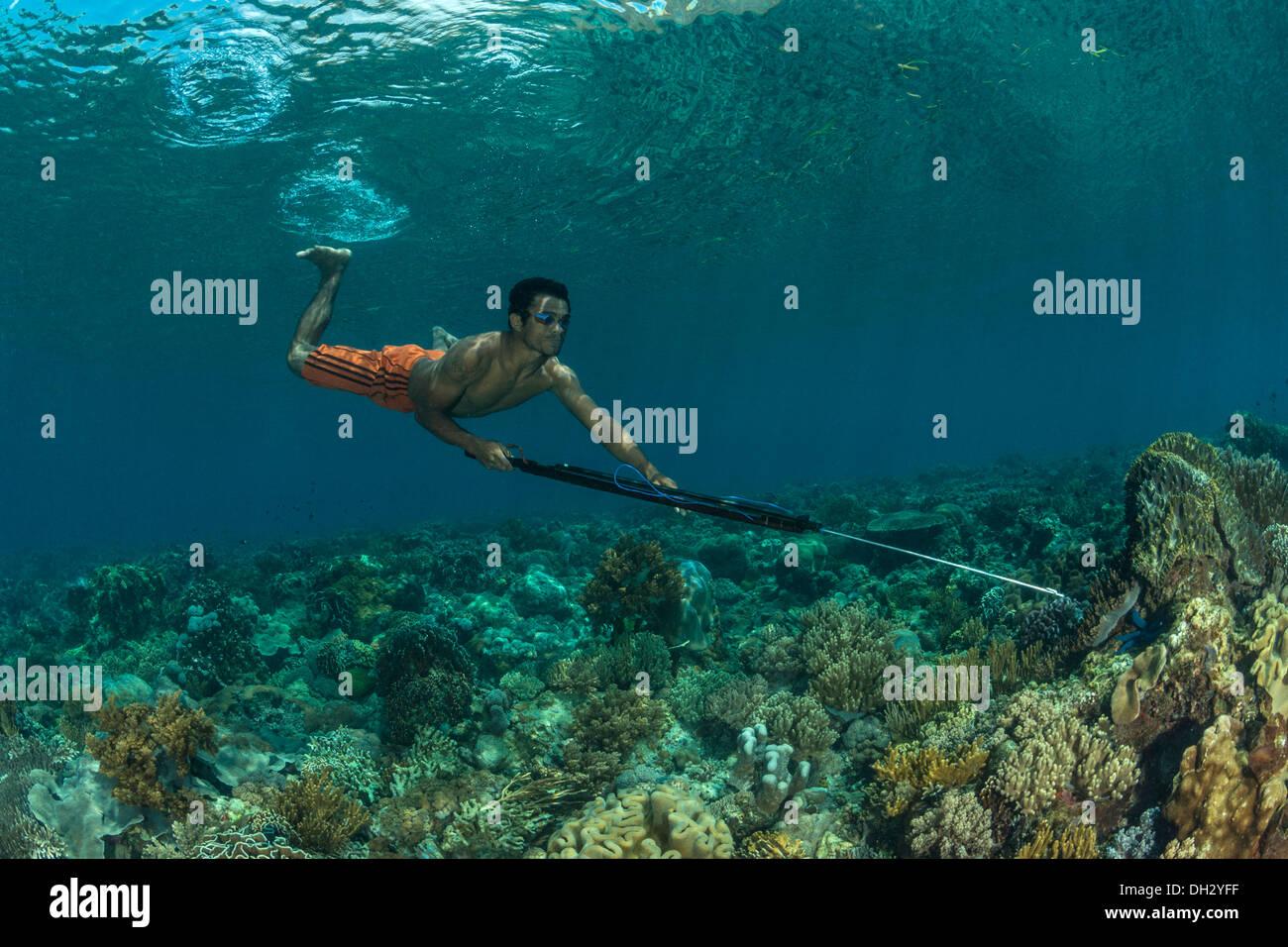 Fisherman hunting with Speargun, Pantar, Alor Archipelago, Lesser Sunda Islands, Indonesia - Stock Image