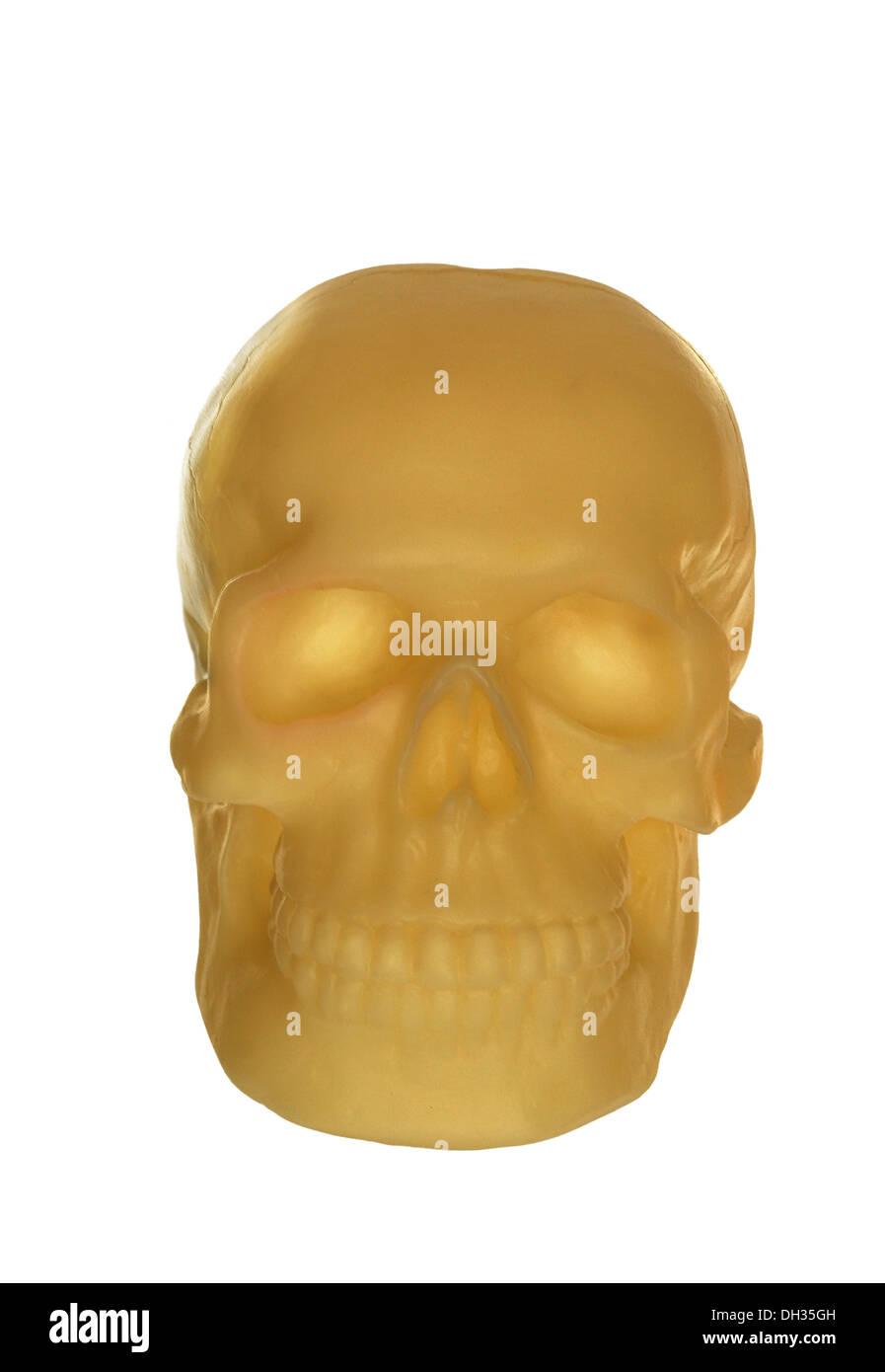 human skull on white background - Stock Image