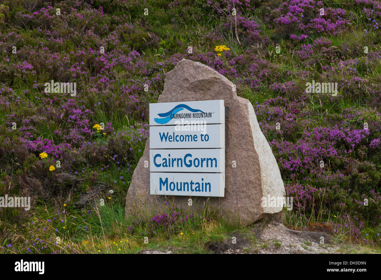 Welcome to Cairngorm Mountain Sign on Granite Boulder in the Heather - Stock Image
