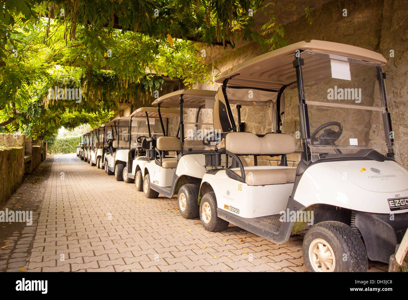 Golf carts in a line under overhanging vines. - Stock Image
