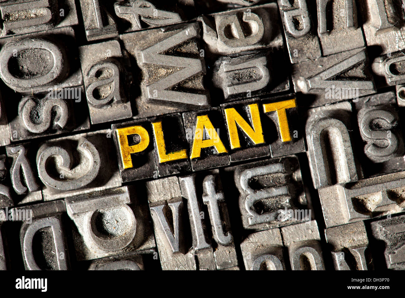 Old lead letters forming the word PLANT - Stock Image