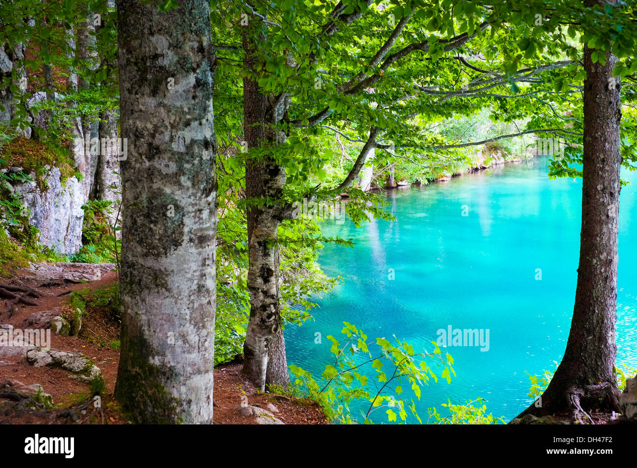 Blue transparent water of Fusine mountain lake, Friuli, Italy - Stock Image