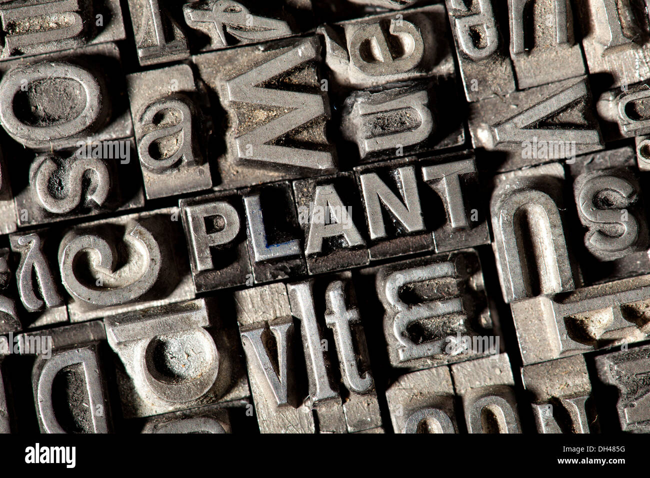 "Old lead letters forming the word ""PLANT"" - Stock Image"