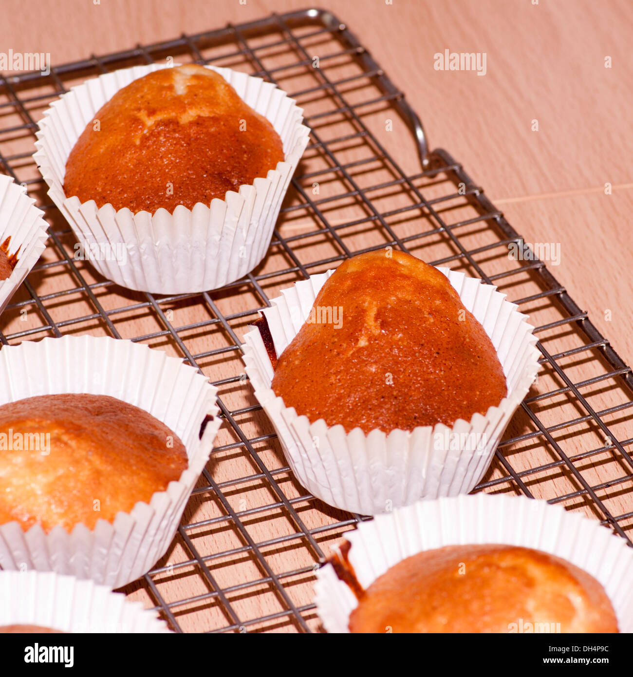 Cup Cakes Cooling Down after being removed from the Oven (focus on centre cake) - Stock Image