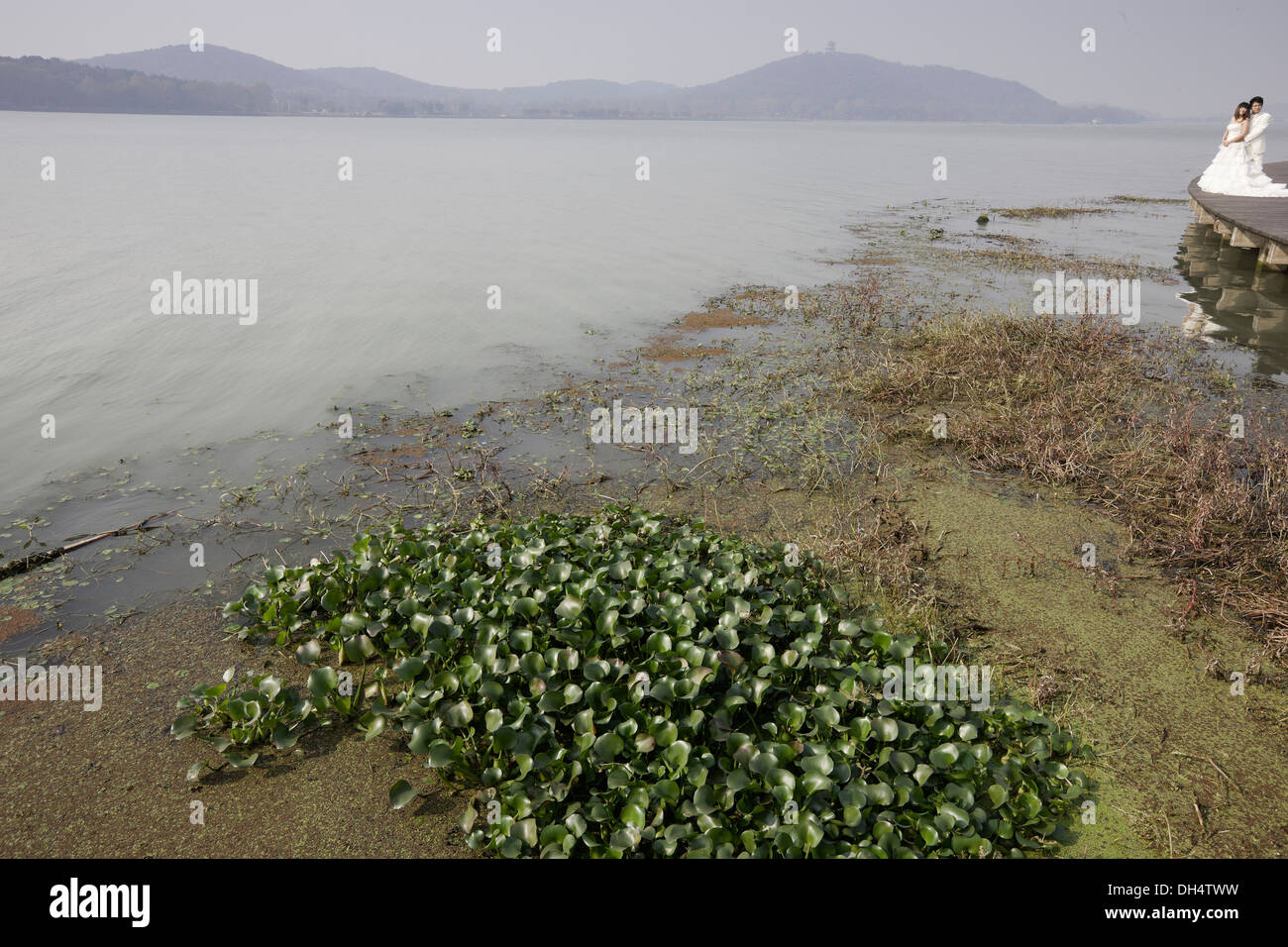 Taihu Lake, China which has in recent years had high nitrogen levels due to fertilizer runoff and development. - Stock Image