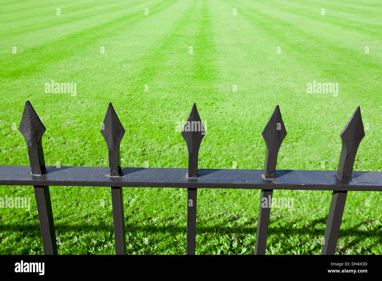 Close-up of iron railings with a grassy background. - Stock Image