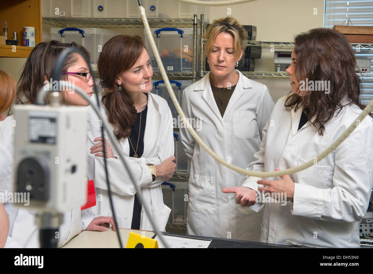 Students Learn About Bone Identification During A Forensic Stock Photo Alamy