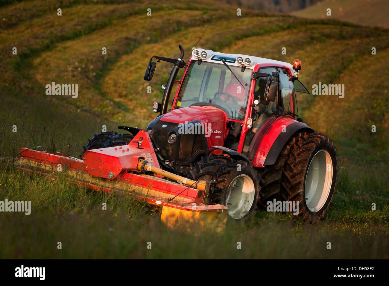 Tractor mowing hay, Söll, Kufstein District, North Tirol, Tirol, Austria - Stock Image