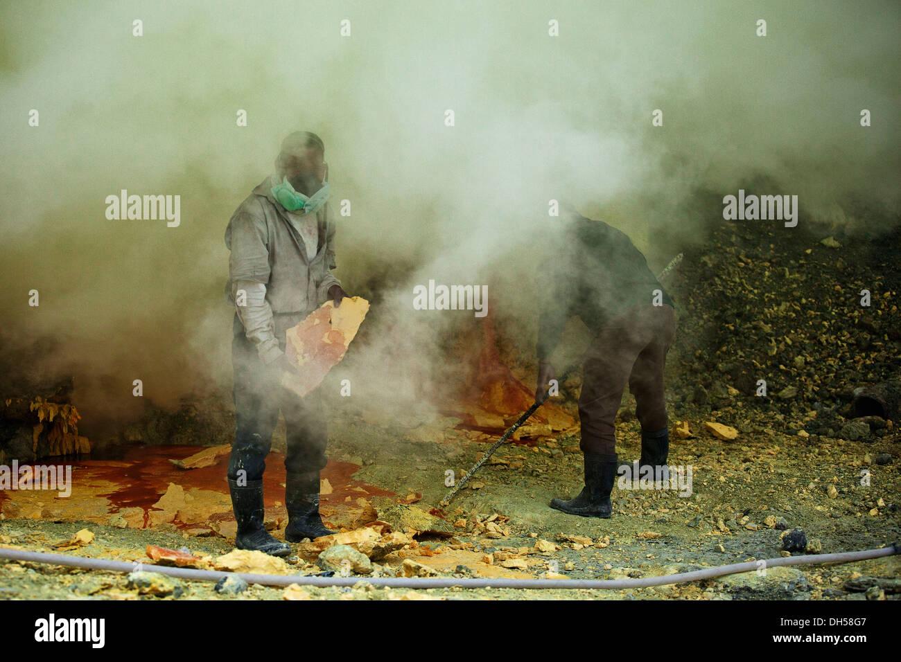 Sulfur miners mining sulfur at Ijen Volcano, Kawah ljen, Eastern Java, Java, Indonesia - Stock Image