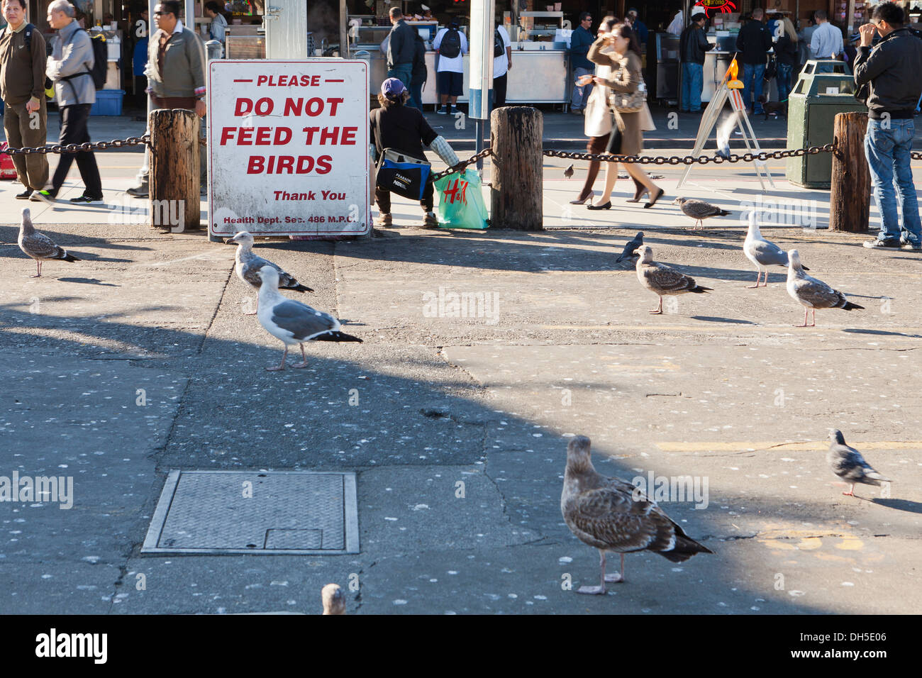 Do Not Feed the Birds sign at Fisherman's Wharf - San Francisco, California USA - Stock Image