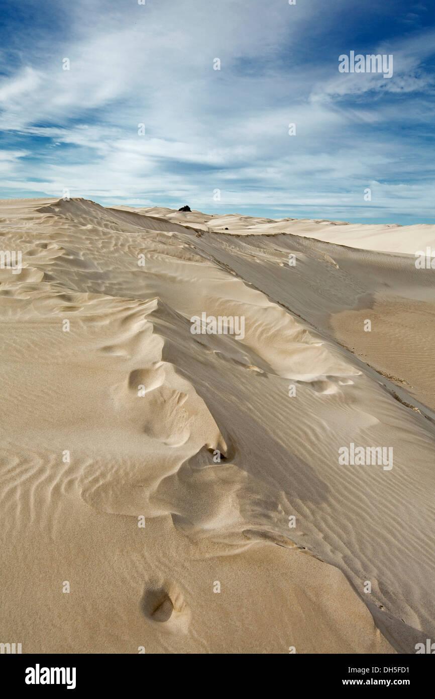 Stark landscape of Yanerbie sand hills / dunes near Streaky Bay on Eyre Peninsula South Australia - Stock Image