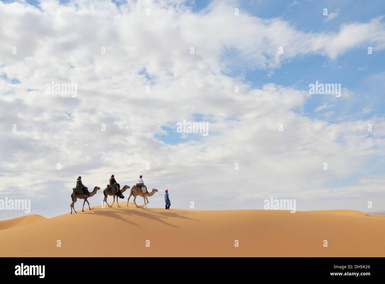 Camel trekking, Erg Chebbi, Morocco, Africa Stock Photo