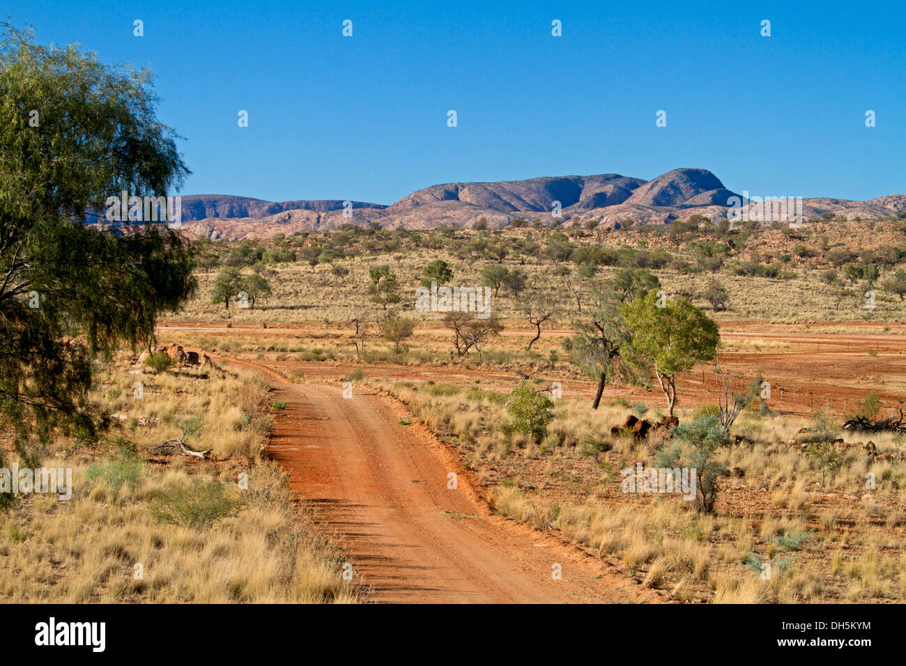 Outback landscape with red road meandering across plains to East MacDonnell Ranges and blue sky on horizon near Alice Springs NT - Stock Image