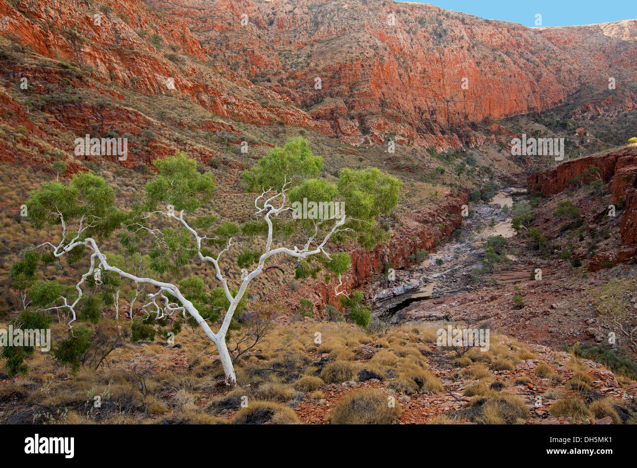 Spectacular view of rugged outback landscape with Ormiston Gorge slicing through red rocky ranges near Alice Springs Australia - Stock Image