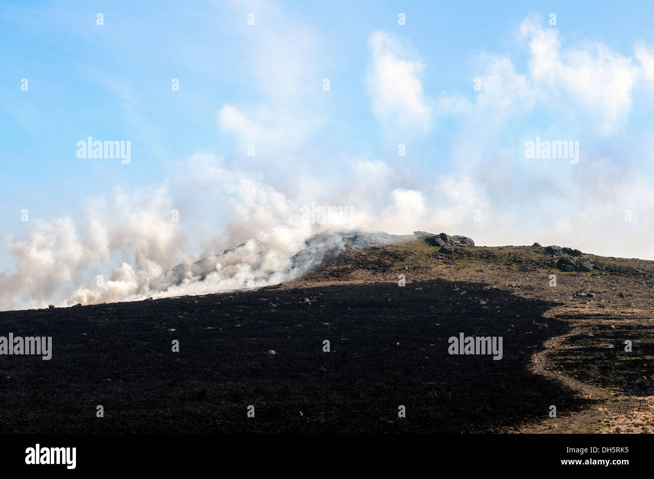 swaling on Dartmoor,peat, heather, fire, hill, flaming, natural, moorland, head, dunnet, disaster, burn, flames, nature, uncontr - Stock Image