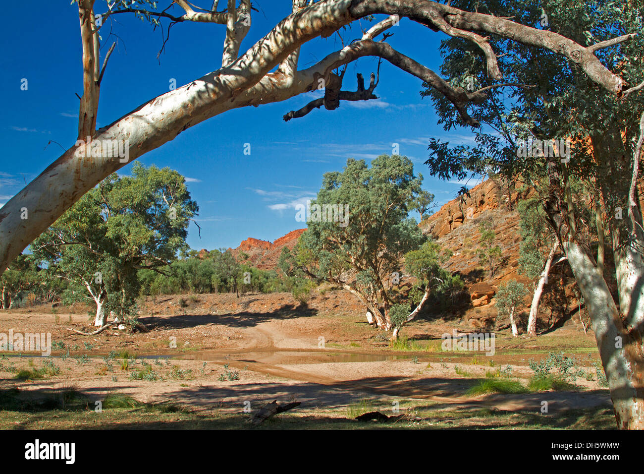 Australian outback landscape with track / road beside red rocks and ghost gums crossing shallow Ross River, Northern Territory - Stock Image