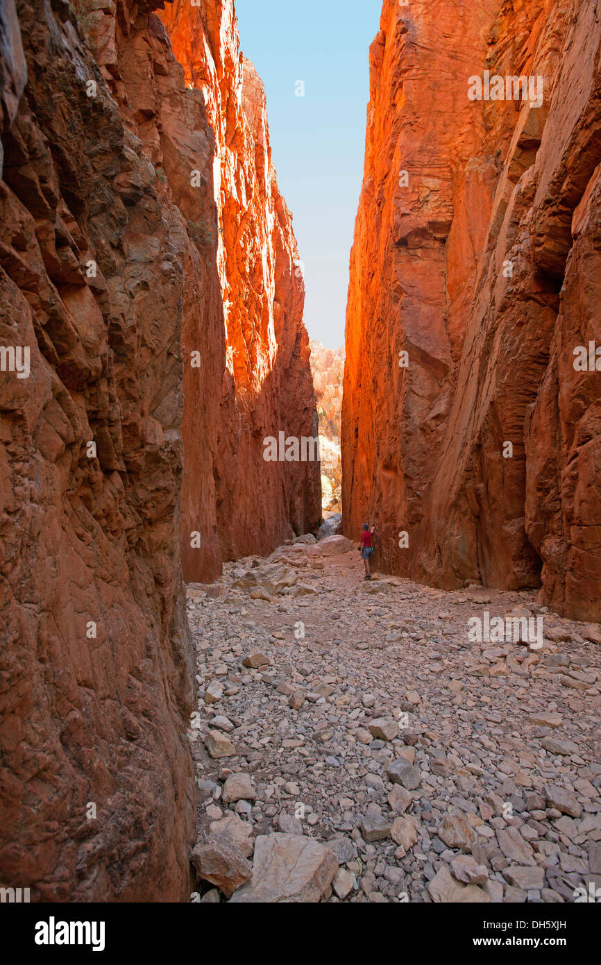 Standley Chasm, popular natural tourist attraction in West MacDonnell Ranges near Alice Springs with man dwarfed by cliffs - Stock Image
