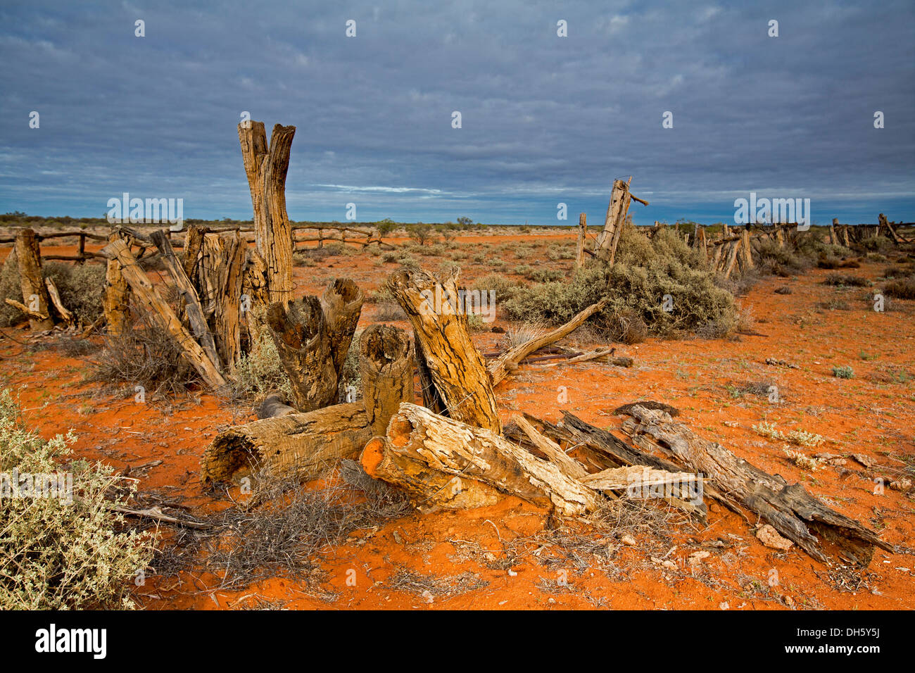 Outback landscape with ruins of historic stock yards on vast red plains stretching to distant horizon near Oodnadatta north SA - Stock Image
