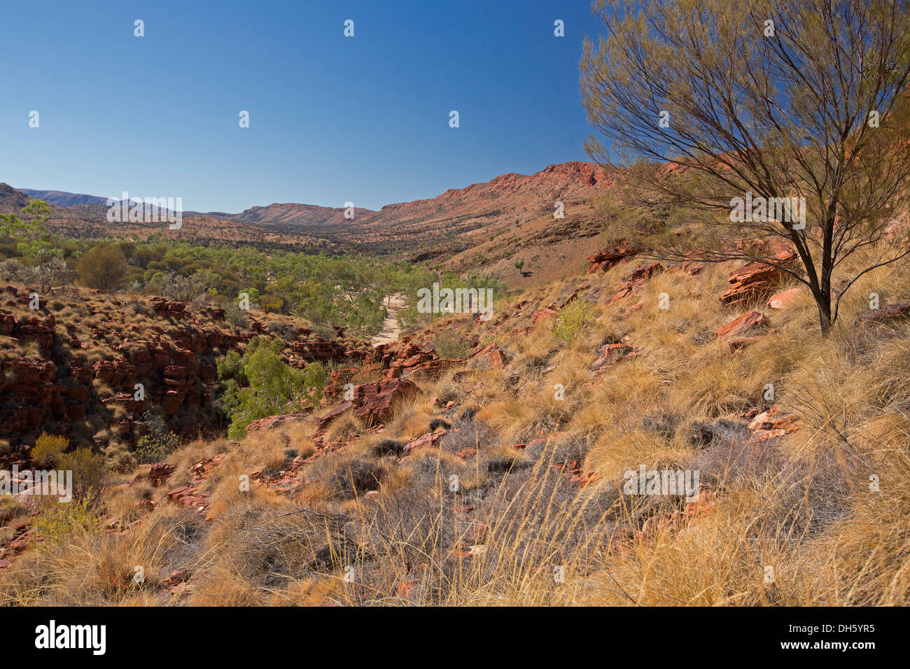 Outback landscape of high rocky cliffs, sandy riverbed, ranges in Trephina gorge nature reserve near Alice Springs NT Australia - Stock Image