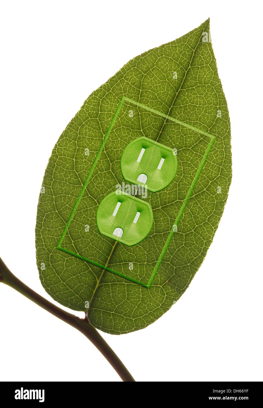 A green plant leaf on a branch with green colored electrical outlets added. - Stock Image
