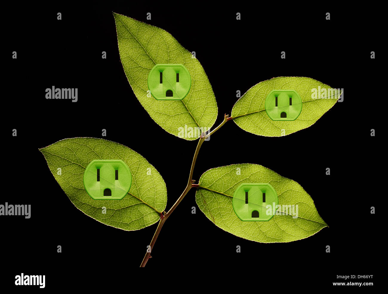 Four green plant leaves with green colored electrical outlets added. Black background - Stock Image