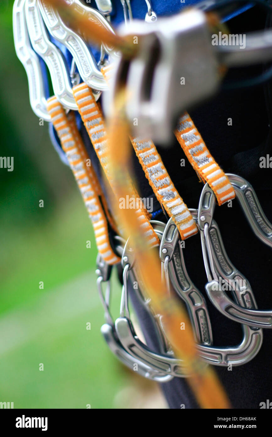 Climber with four orange express carabiner clips attached to a harness, behind the safety rope with an ATC belay device, Hamburg - Stock Image