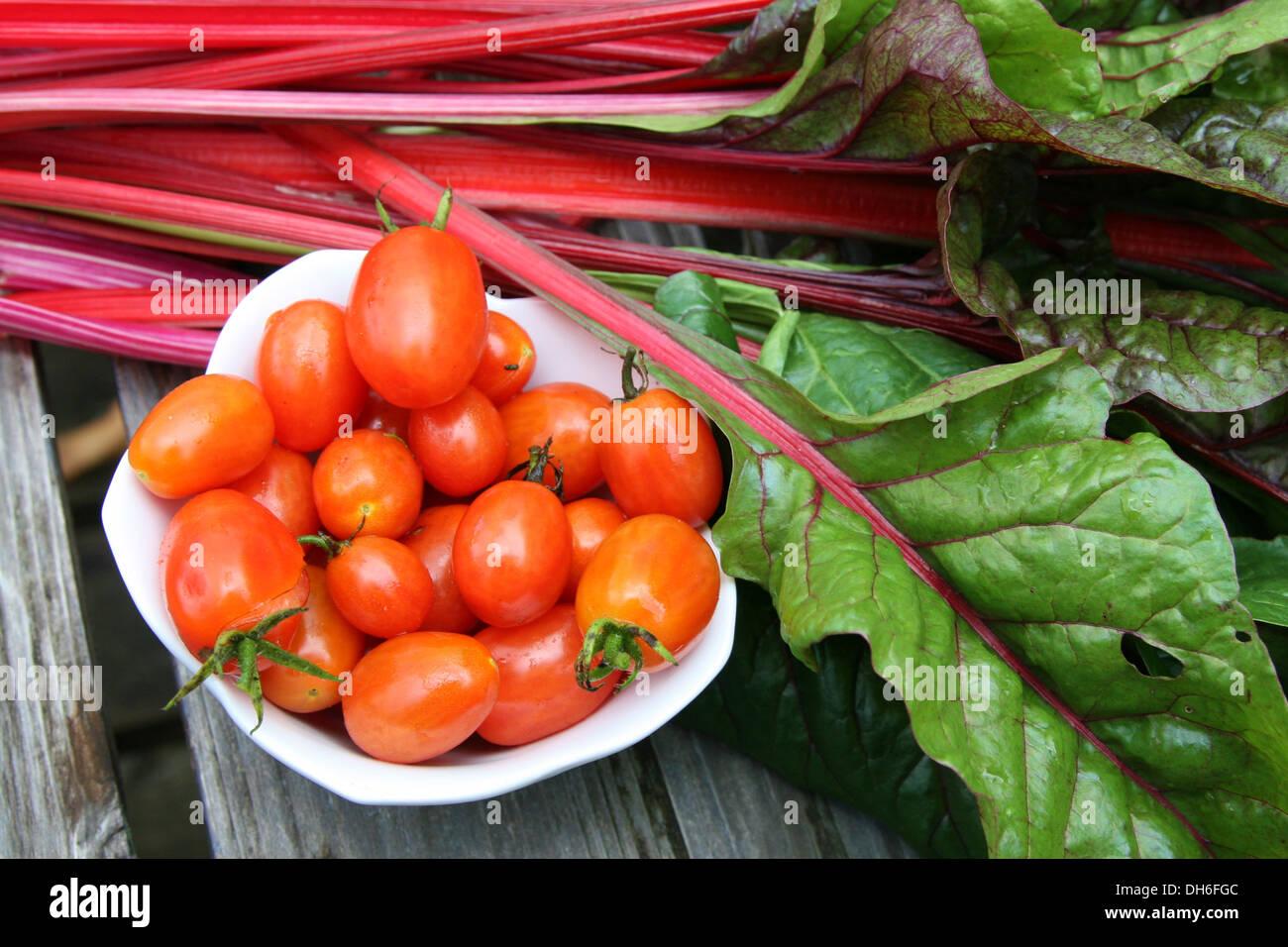 Cherry tomatoes and swiss chard - Stock Image