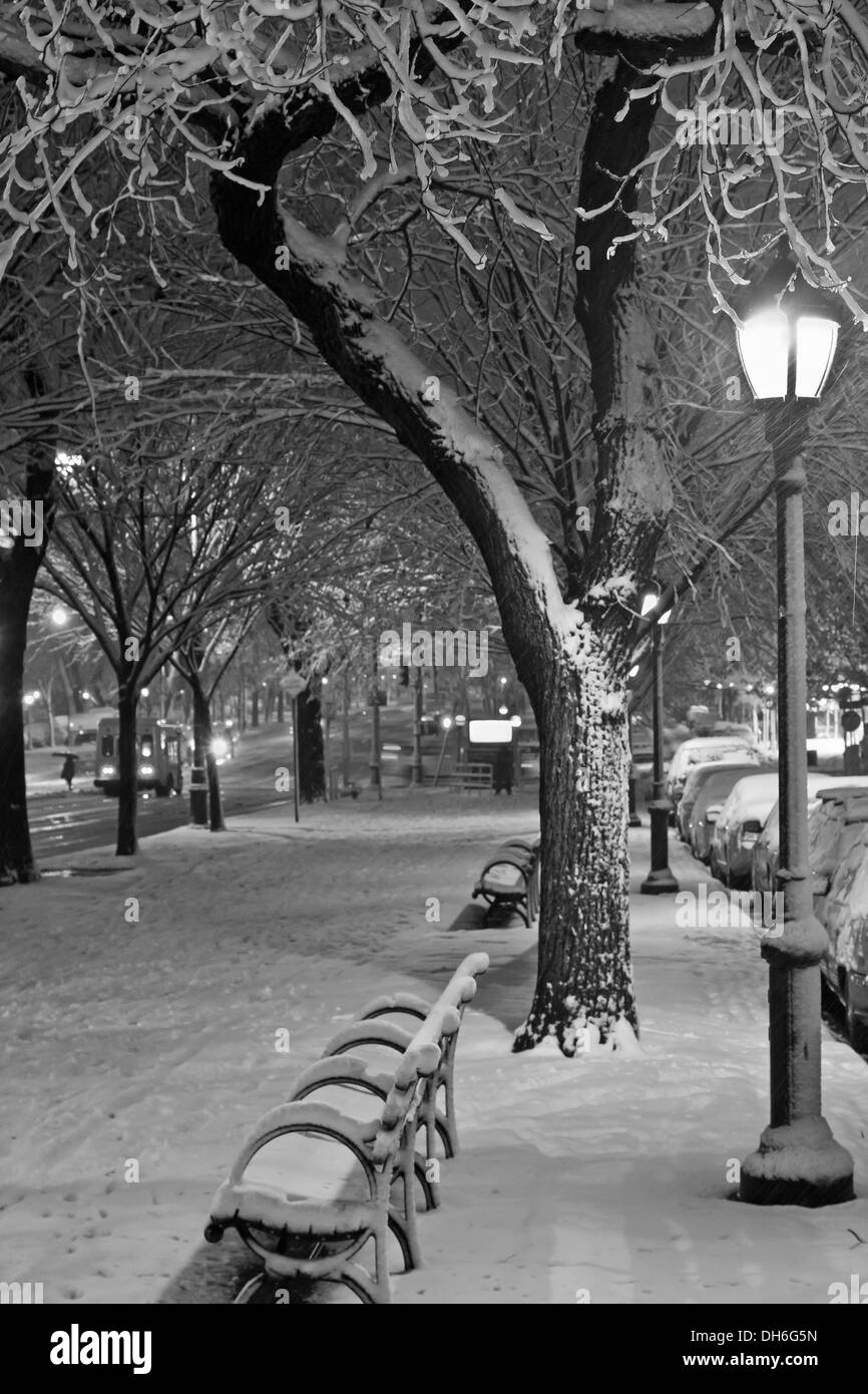Black and white photo of the walkway and bike path during November Nor'easter on Eastern Parkway in Brooklyn, NY - Stock Image