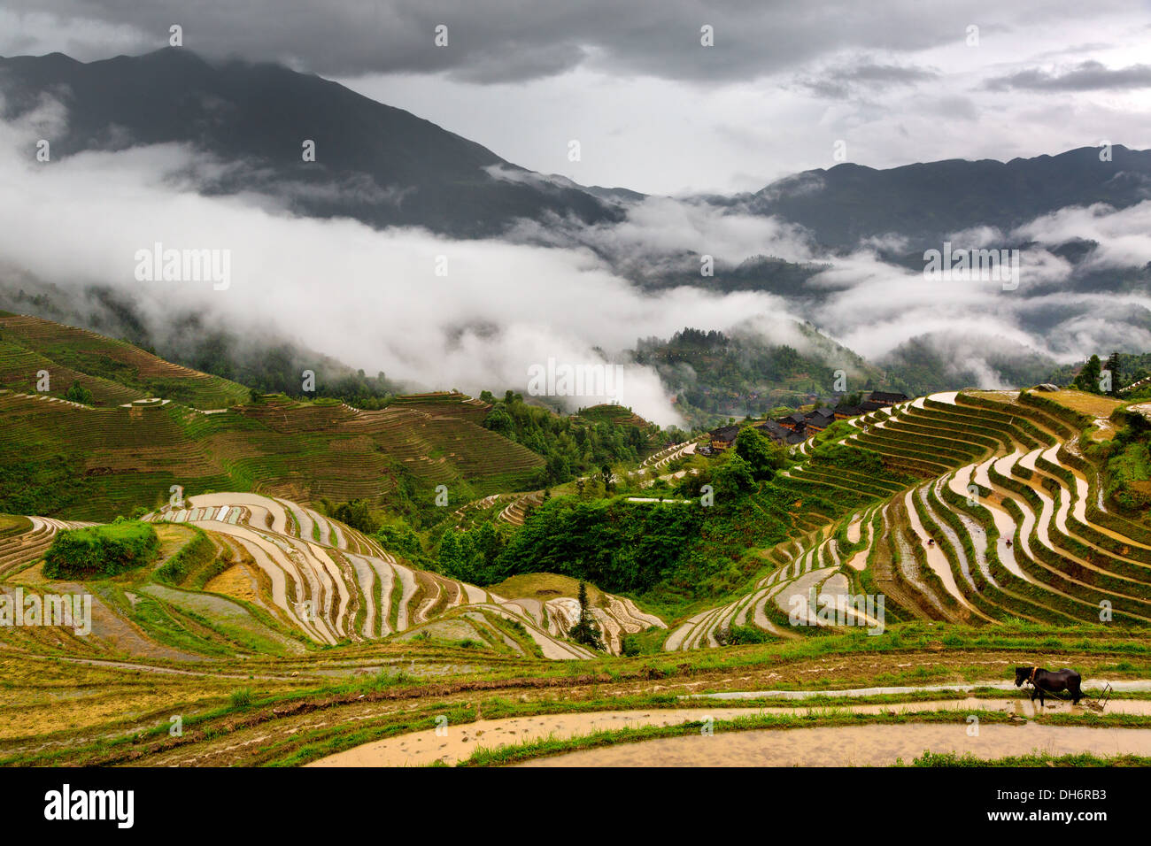 View of Longji rice terraces in Guangxi province, China Stock Photo