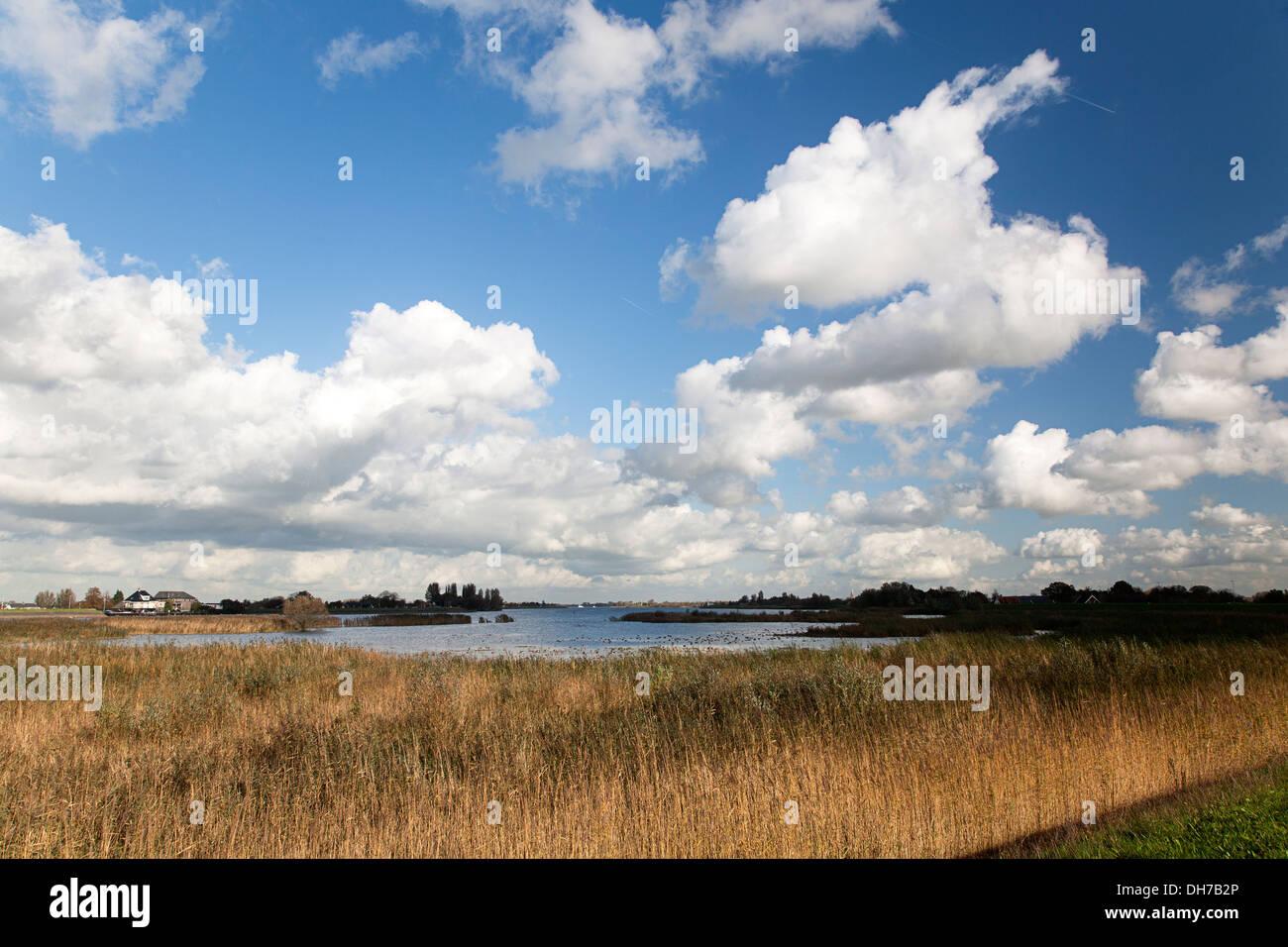 Foreland of Dutch river Lek, Nieuw-Lekkerland, South Holland, Netherlands - Stock Image