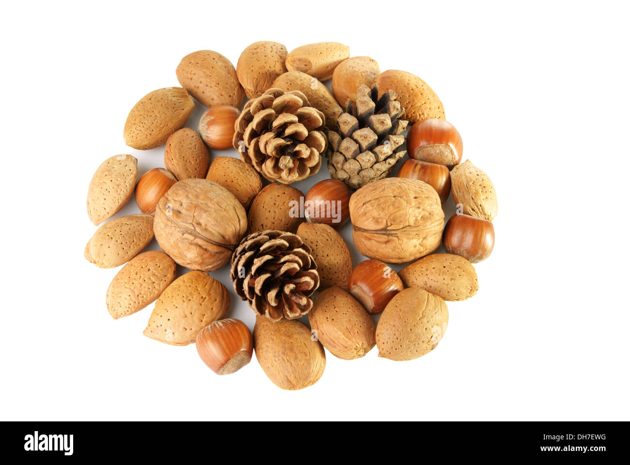 Christmas decoration with nuts and pine cones on white background - Stock Image