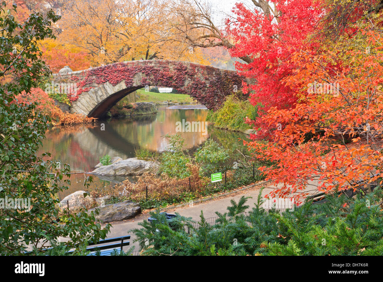 Gapstow Bridge on the Central Park Pond covered in red ivy and surrounded by beautiful fall foliage in New York City - Stock Image
