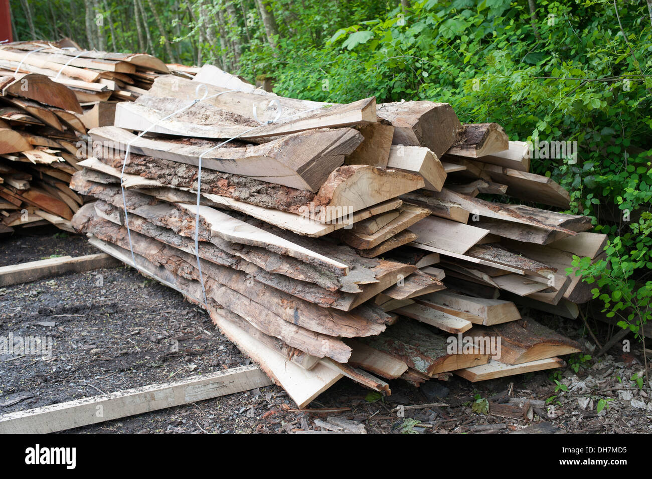 Rough Cut Planks of wood timber at sawmill saw mill - Stock Image