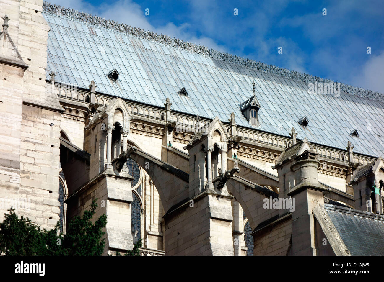 Close up of roof and gargoyles of Notre Dame Paris - Stock Image