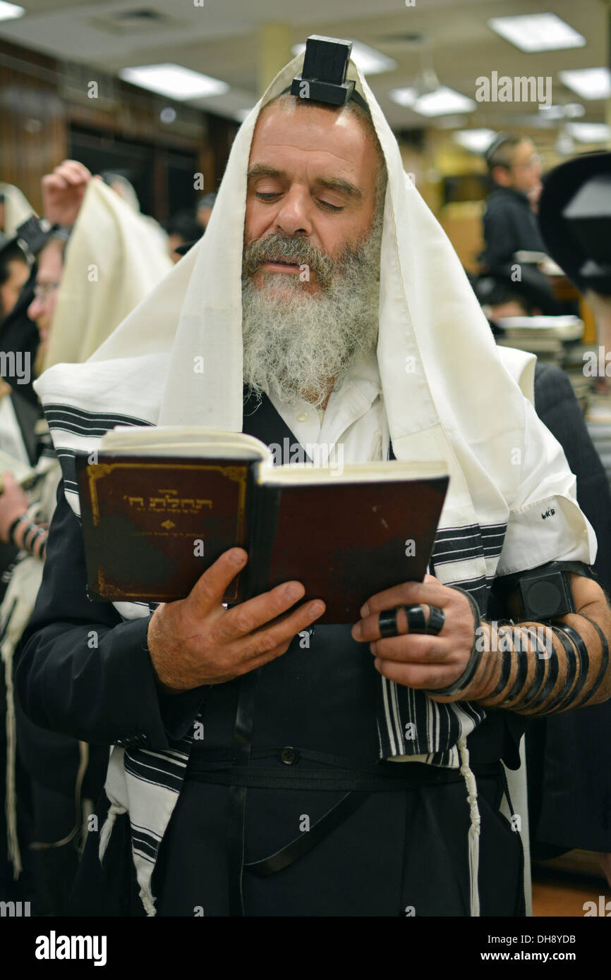 Religious Jewish man praying wearing Teffilin, phylacteries, and a prayer shawl at Lubavitch headquarters in Brooklyn, New York - Stock Image