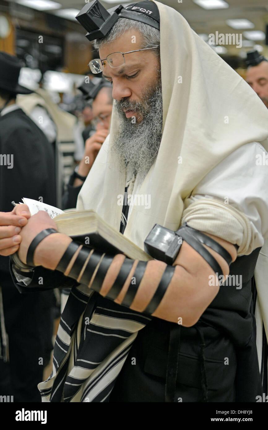 Religious Jewish man praying wearing tefillin, phylacteries, and a prayer shawl at a synagogue in Brooklyn, New Stock Photo
