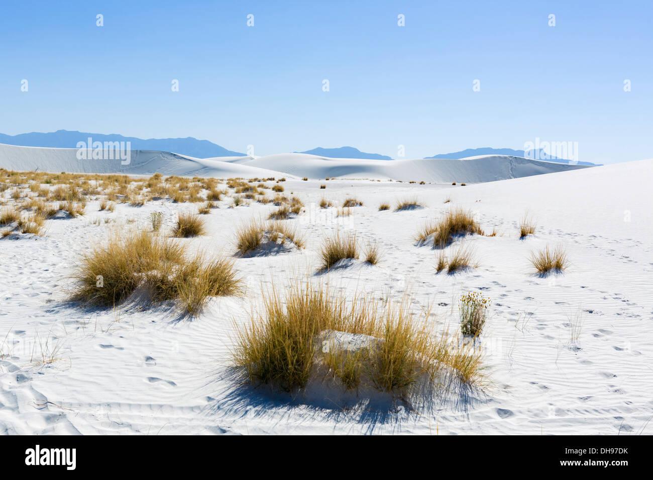 White Sands National Monument, near Alamogordo, New Mexico, USA - Stock Image