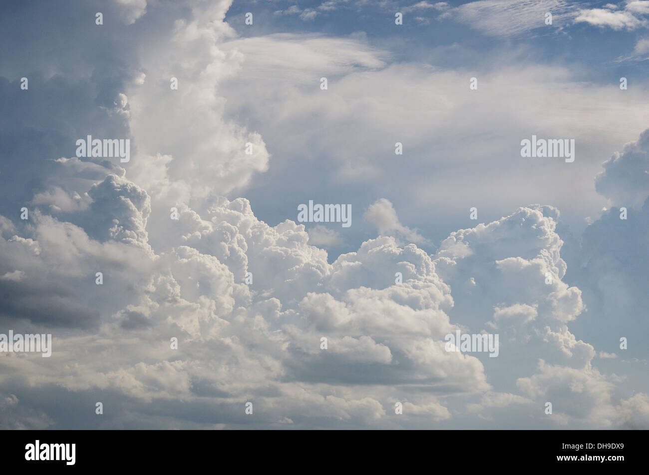 The Cumulus in the sky - Stock Image