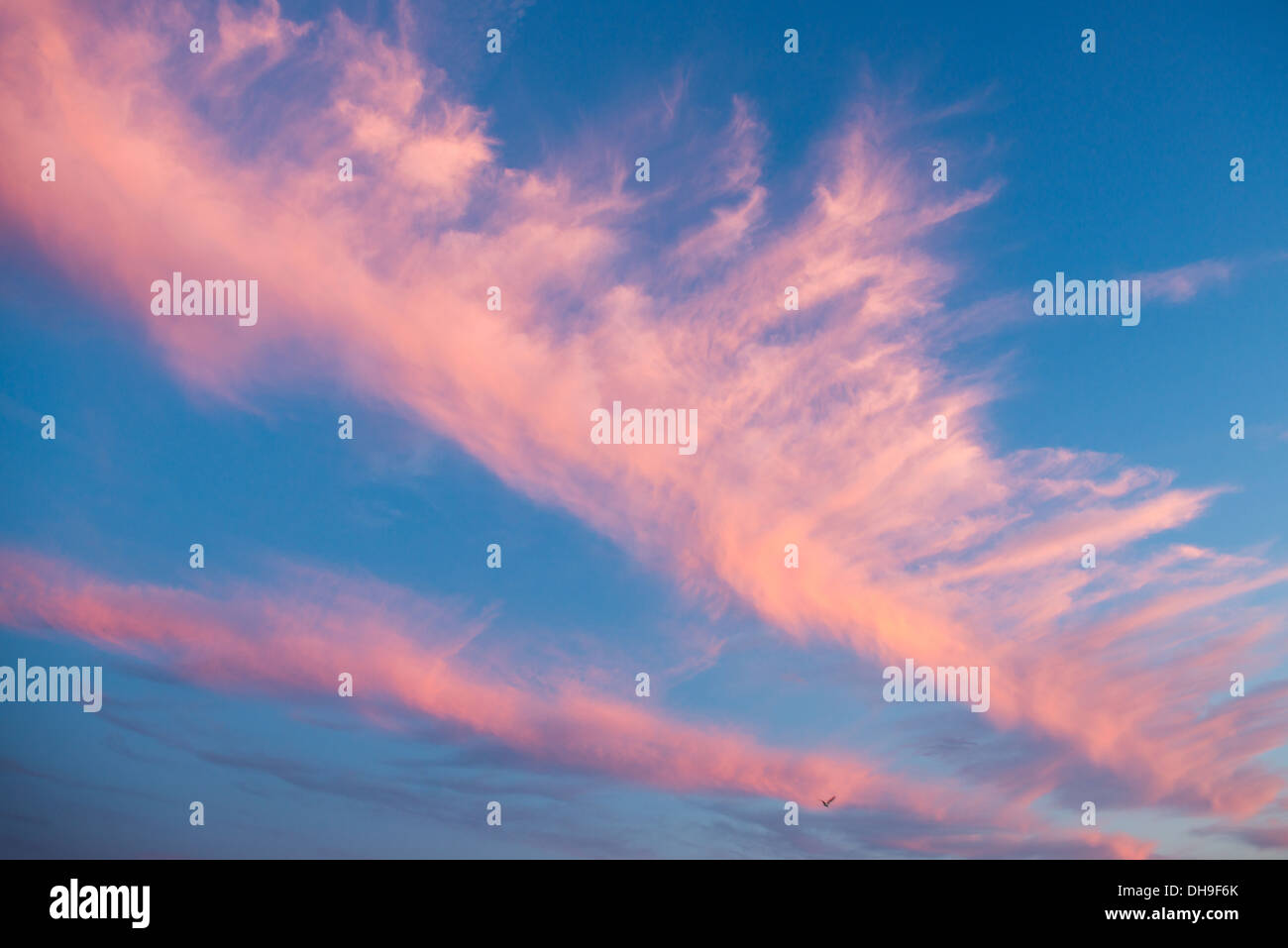 Wispy Pink Clouds - Stock Image