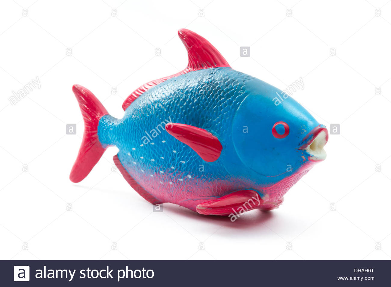 Fish Toy Plastic Colorful On Stock Photos & Fish Toy Plastic ...