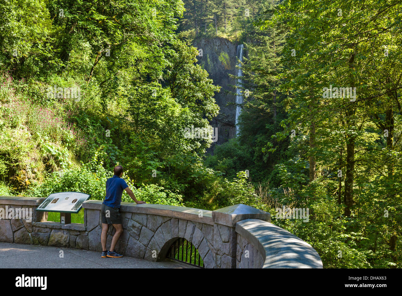 Latourell Falls, Columbia River Gorge, Oregon, USA - Stock Image