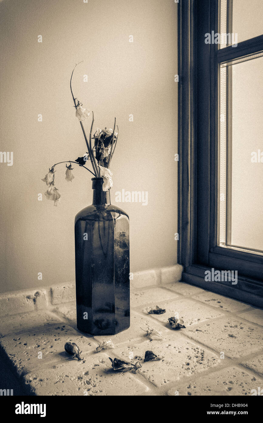 Flowers wilting in a vintage glass bottle. - Stock Image