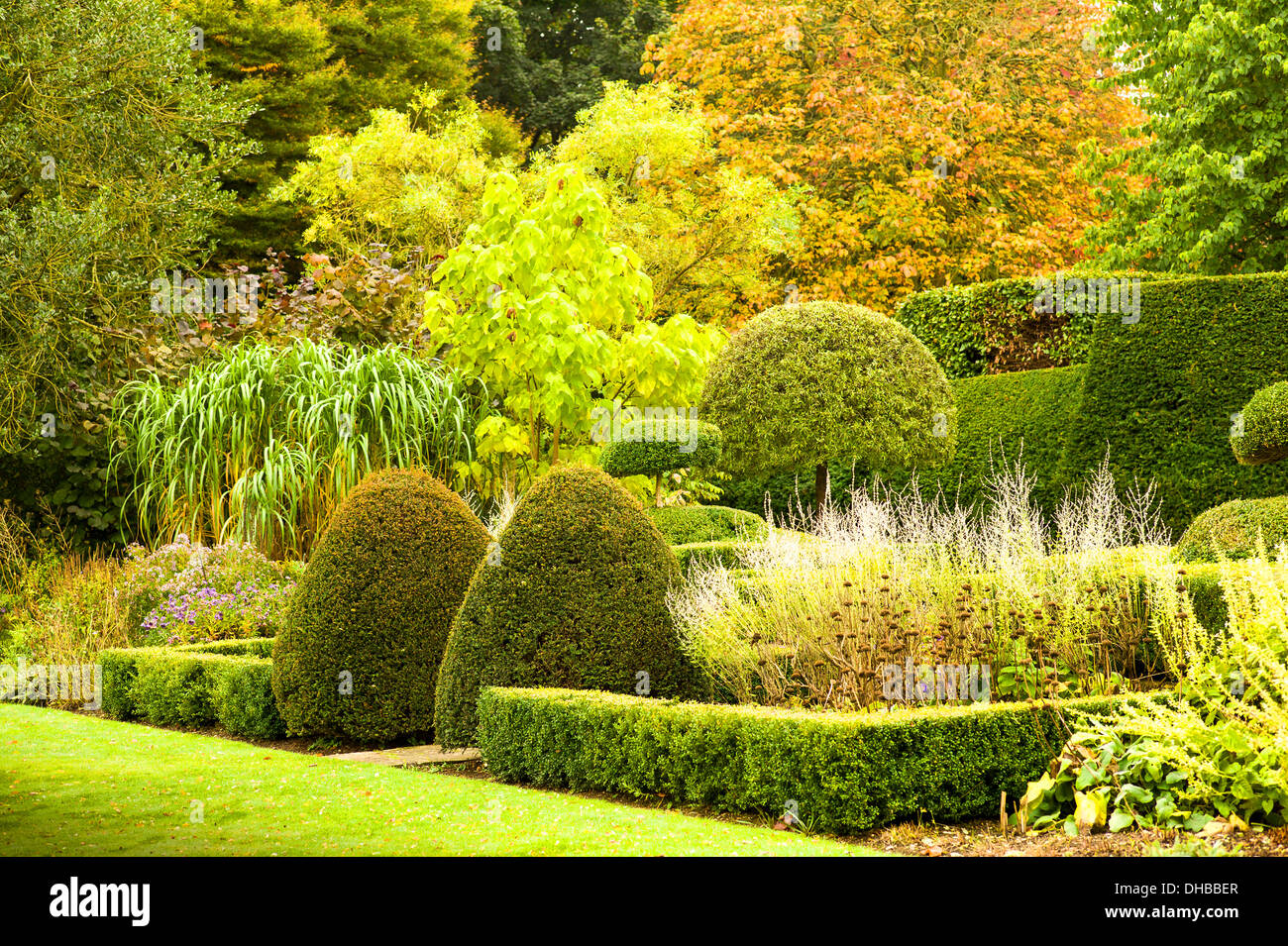 A green border in Autumn UK - Stock Image