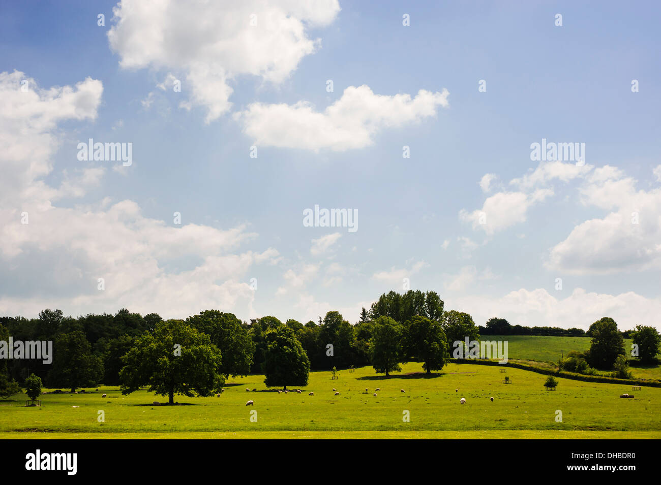 Meadow, view across typical English country landscape. - Stock Image