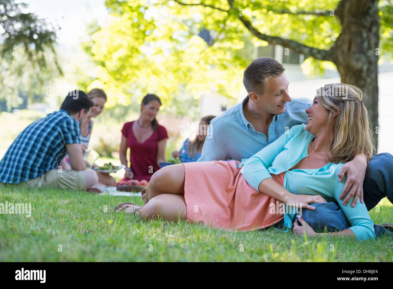 A group of adults and children sitting on the grass under the shade of a tree. A family party. - Stock Image