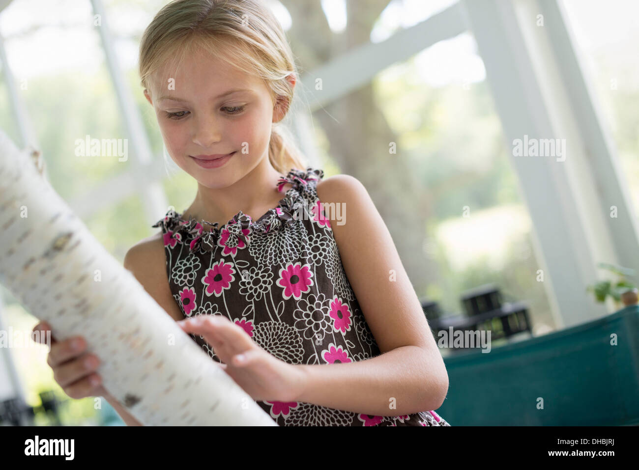 A young girl holding a piece of tree trunk with very white bark. - Stock Image
